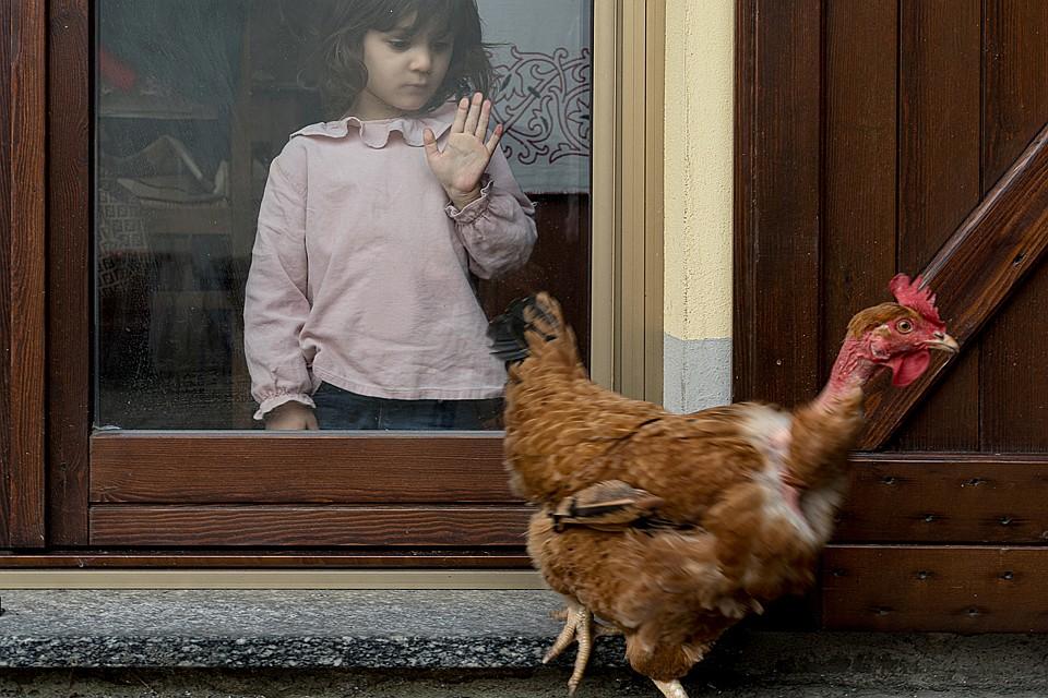 Школы закрыты. Дети скучают Фото: REUTERS