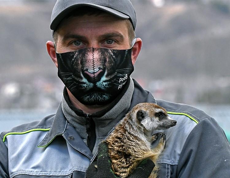 Зоолог Андрей Махров в креативной защитной маске и сурикат по кличке Рики