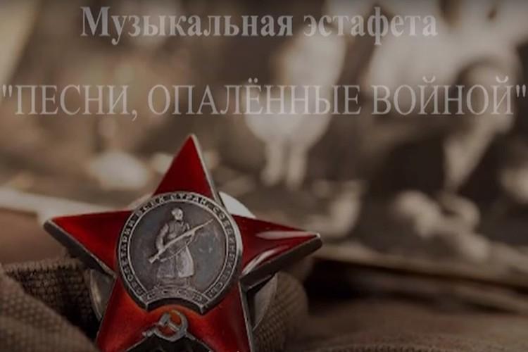 Проект стал истинно народным. Фото: архив Елены Романенко
