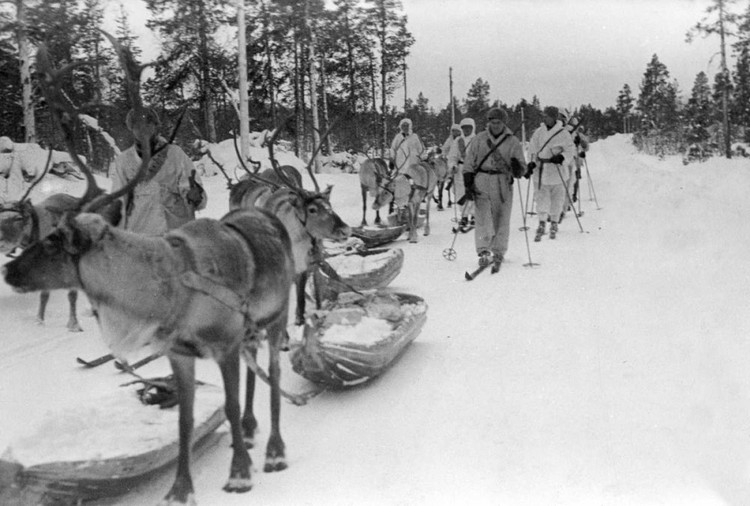 Оленеводы занимались не только транспортными операциями. Без воинов-погонщиков не обходилась ни одна боевая операция заполярных партизан, которые уходили во вражеские тылы на глубину до пятисот километров.