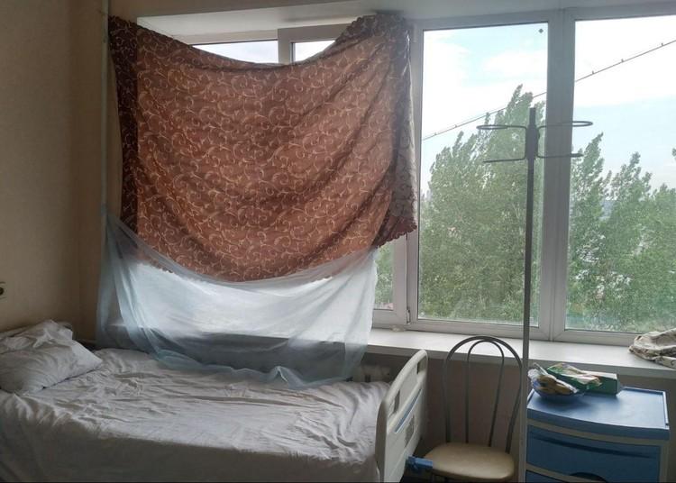 Самодельные шторы спасают от палящего майского солнца.