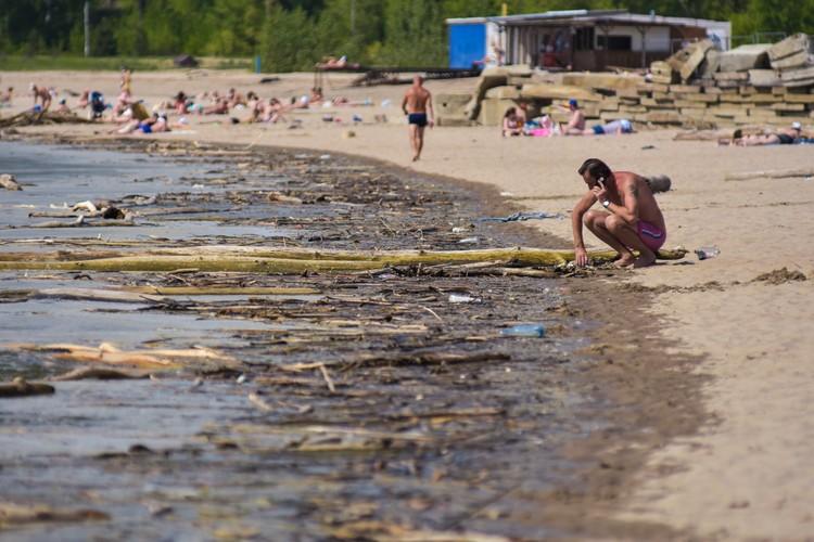 Вода у берегов Обского моря сейчас очень грязная, что характерно для весны.