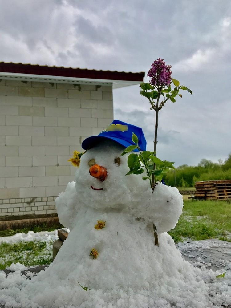 В Лебедянском районе Липецкой области выпал град