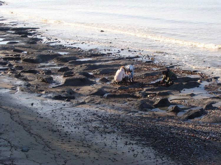В Куликово песчаные наносы с пляжа снесены, обнажилась древняя морена.