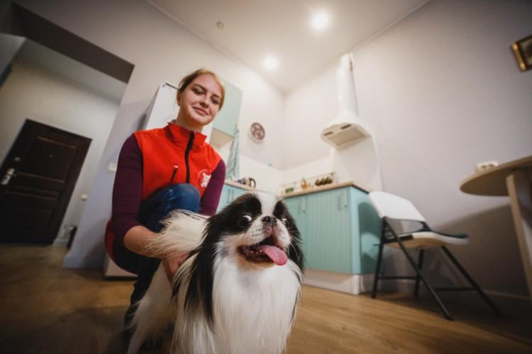 Помимо выгула «Гульдогу» можно поручить и полноценную передержку собак, кошек и другой живности на время вашего отъезда.Фото: предоставлено компанией «Гульдог».
