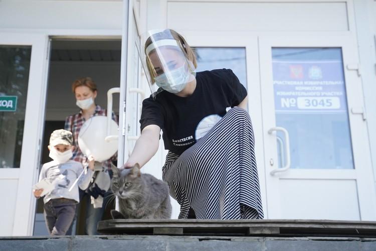 Котики тоже работат на участке, антистрессом