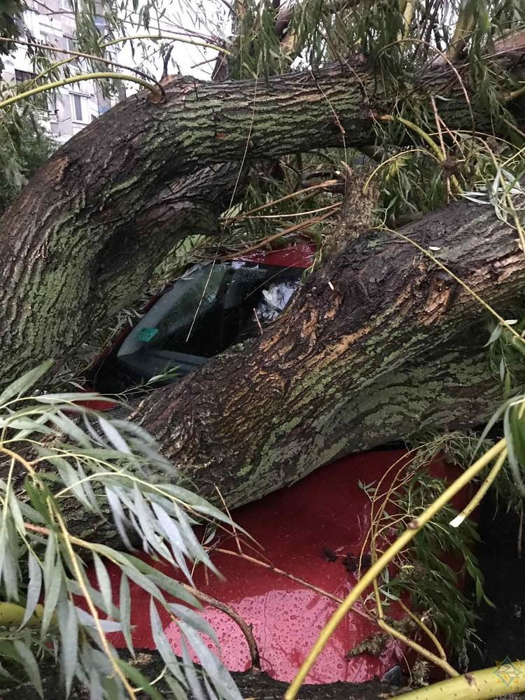 Автомобиль был припаркован во дворе на улице Луцкой в Бресте. Фото: МЧС