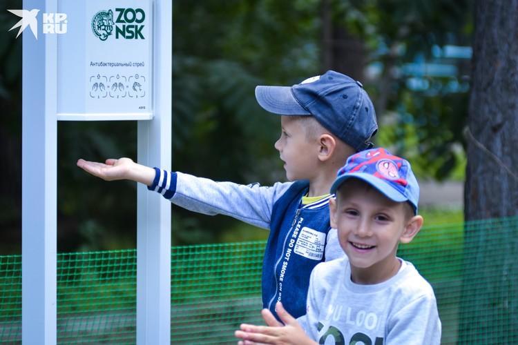В зоопарке везде расставлены дозаторы с антисептиком.