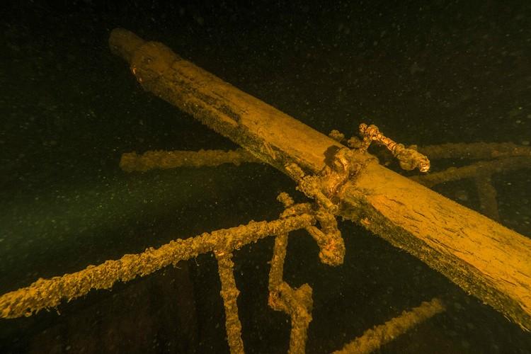 Кадры подводной съемки. Фото: Дайв-бот «Одиссей-2»