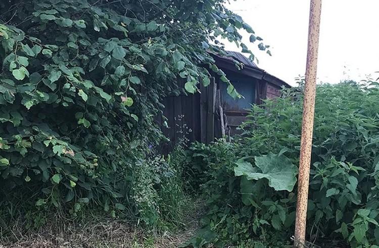 Соседи особых перемен в жизни Надежды Бушуевой не заметили. ФОТО: Денис Крылышков