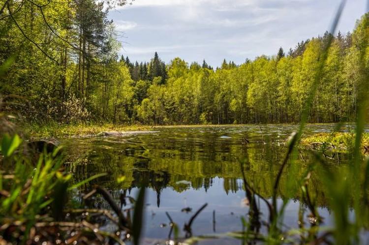 Живописнейшее озеро.