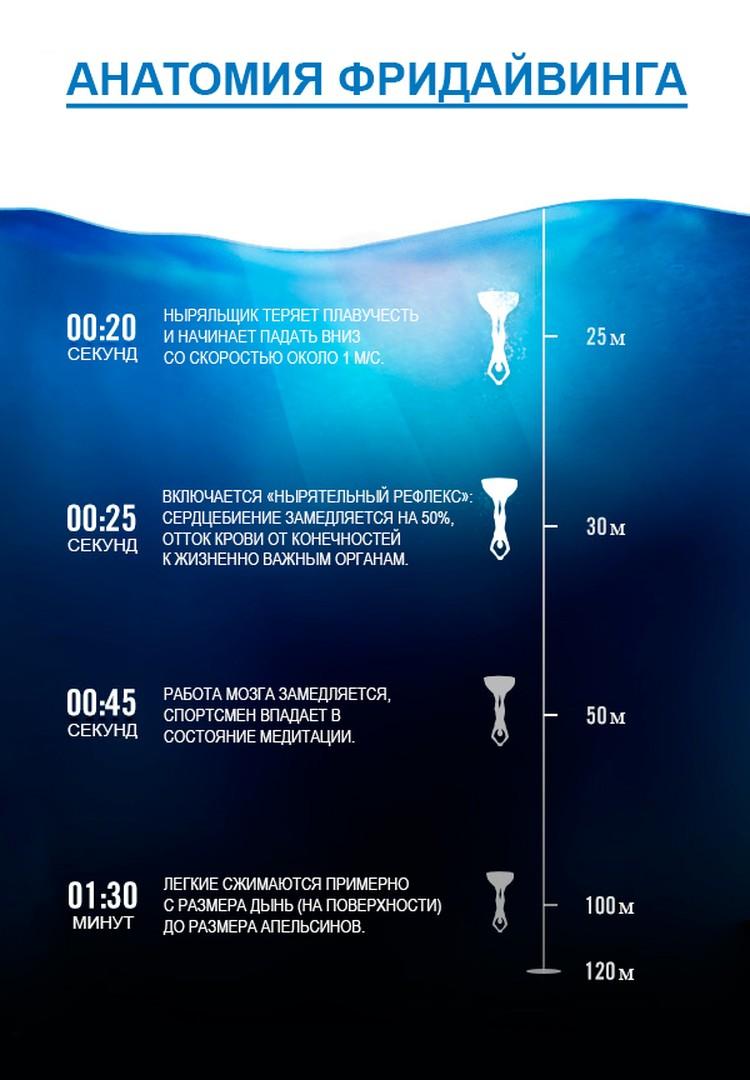 Что происходит с организмом фридайвера при погружении на глубину Фото с сайта tetis.ru