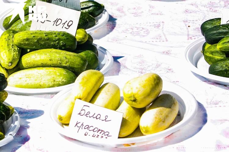 Сорт Белая Красота. Плоды богаты йодом и полезны для здоровья. Фото: Евгения МОРЕВА.