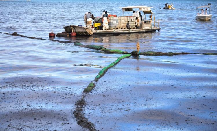 Добровольцы пытаются собрать с поверхности моря разлившееся с сухогруза масло