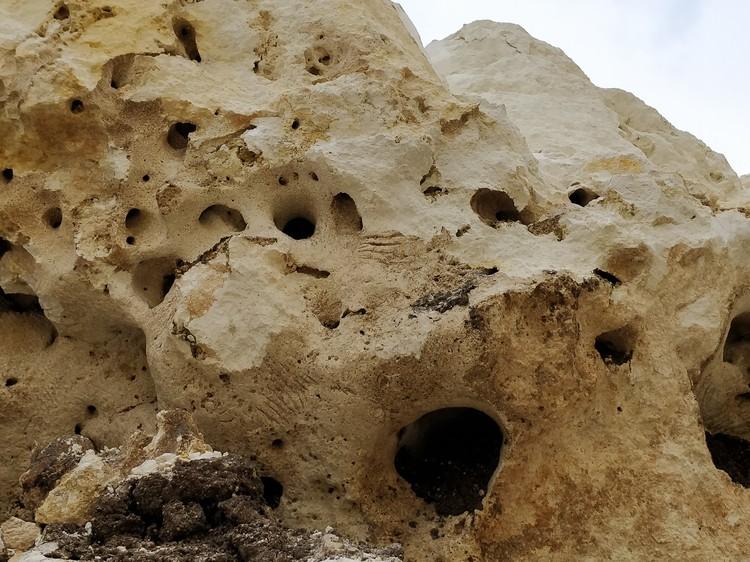 Если присмотреться, можно увидеть царапины на каменных сводах. Это следы от когтей животных, которые угодили в пещеру и пытались из нее выбраться.