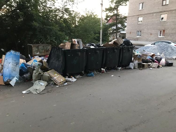 О раздельном сборе мусора слышали далеко не везде в Башкирии. Фото: соцсети