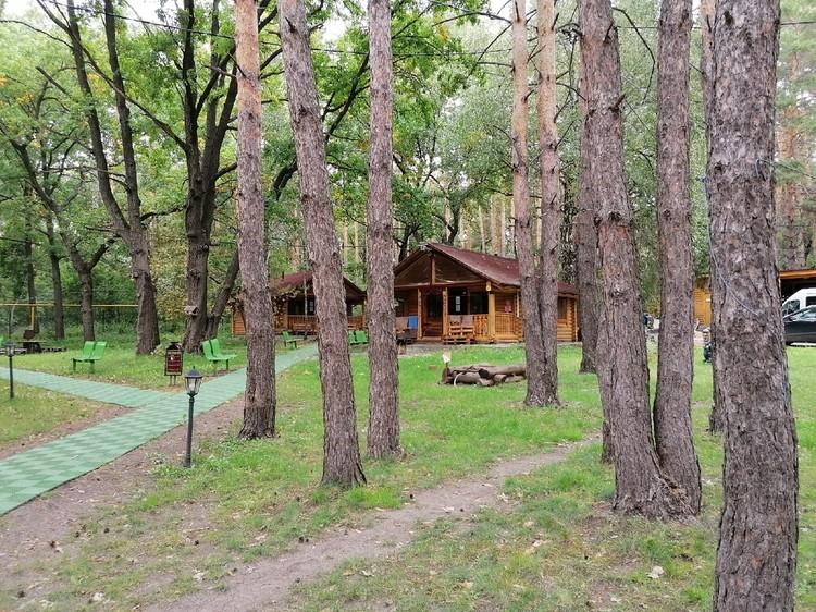 Уютные домики между сосен