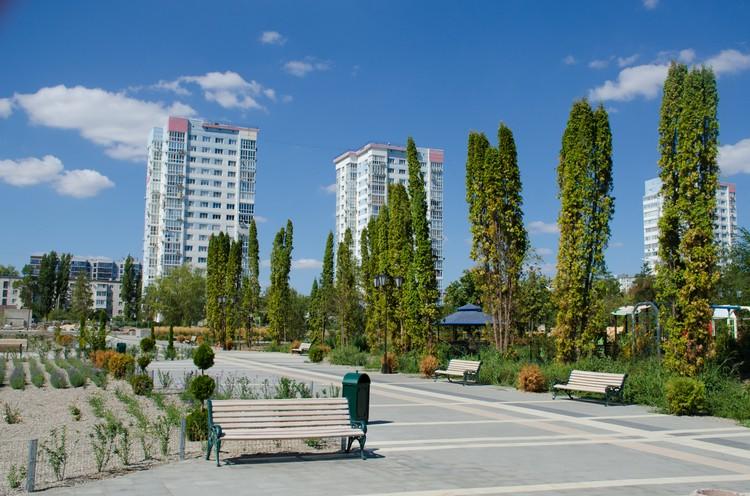 Весной парк украсила такая аллея.