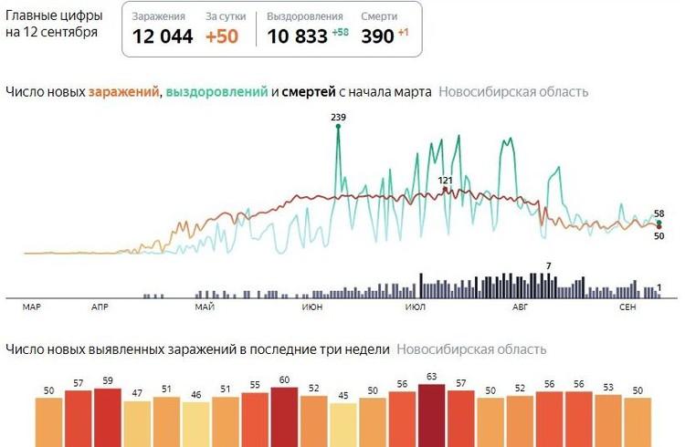 Статистика заболеваемости коронавирусом в Новосибирске на 13 сентября 2020 года. Фото: «Яндекс».