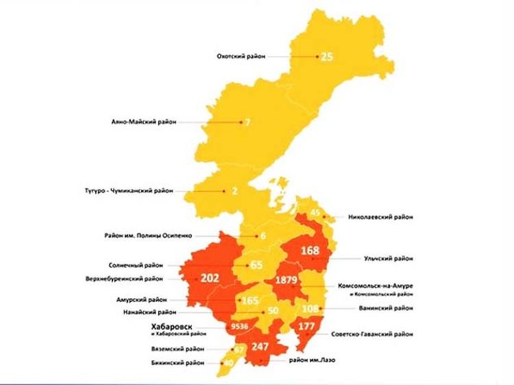 Количество заболевших по регионам края. Министерство здравоохранения Хабаровского края