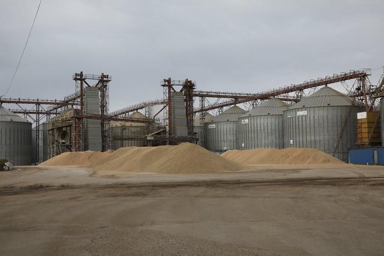 Зернохранилище. Зерно, которое убрали с полей, скоро будет в амбарах. ФОТО: Лариса Федорова.