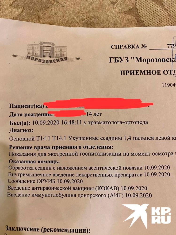 После публикации информации о нападении на сайте kp.ru Прокуратура Московской области сообщила о проведении проверки.