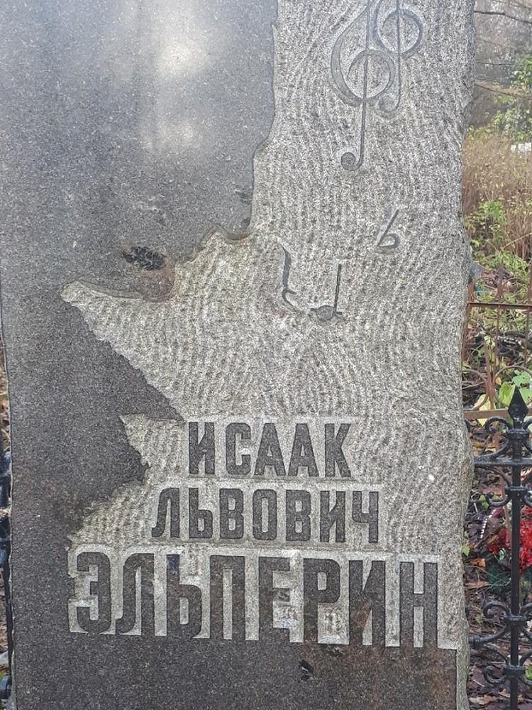 Фото: Альбина Сберегаева.
