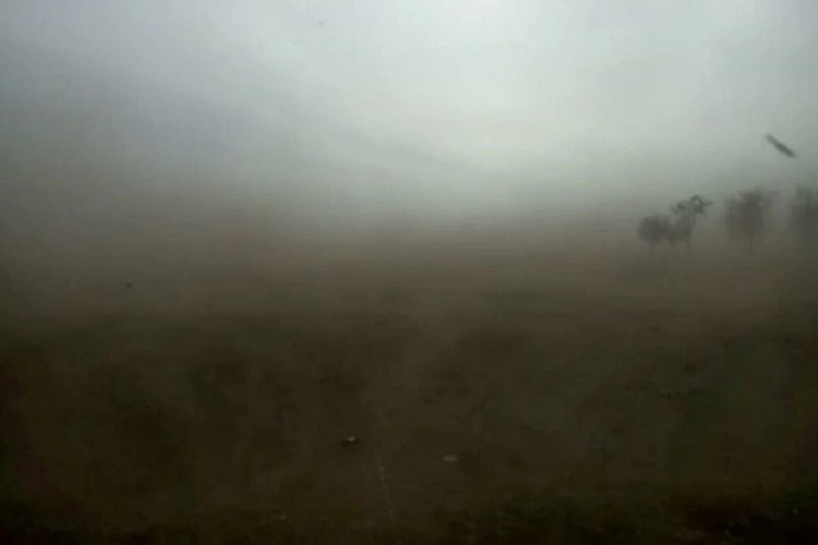 В восточных районах – Туркменском, Левокумском, Нефтекумском, пыльная буря затрудняла движение транспорта.