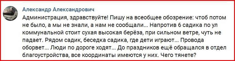 Житель Красновишерска сообщил об опасном дереве.