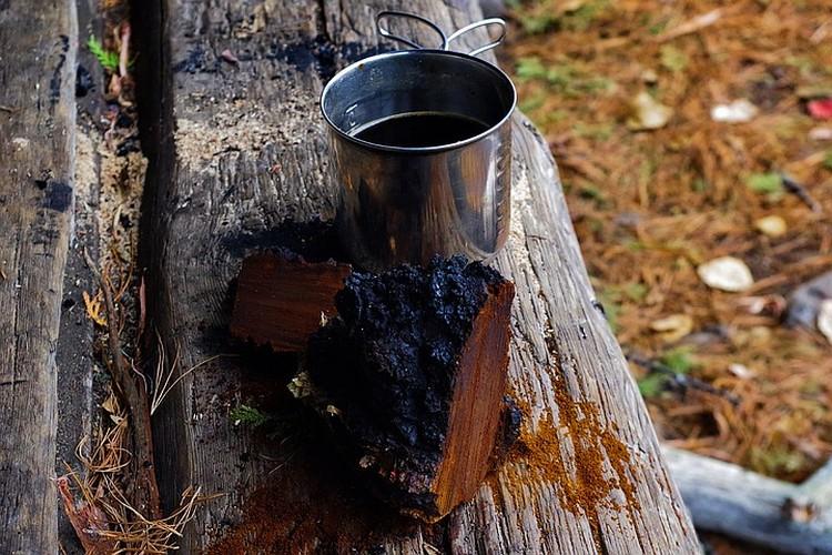 На Руси чай из чаги издавна применяли для профилактики и лечения множества болезней