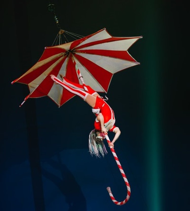 Фото: circus-dovgalyuk.ru