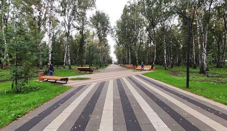 Обновленная центральная аллея обустроена зонами отдыха и парковыми диванами. Фото: пресс-служба АПК.
