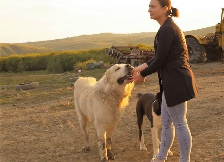 Семья Кустовых взяла по программе «Дальневосточный гектар» участок площадью 8 гектаров. Фото: предоставлено АРЧК