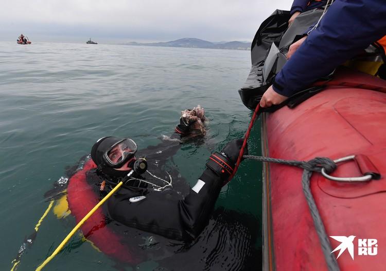 Водолазные работы спасателей МЧС в Черном море недалеко от Адлера. На месте катастрофы самолета Министерства обороны , который летел в Сирию