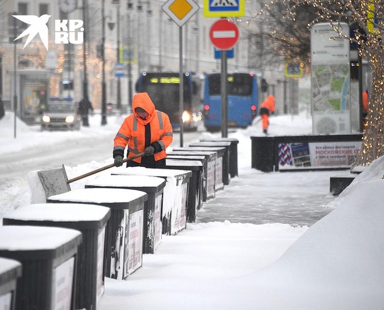 В Москве за ночь выпало до 10 см снега.