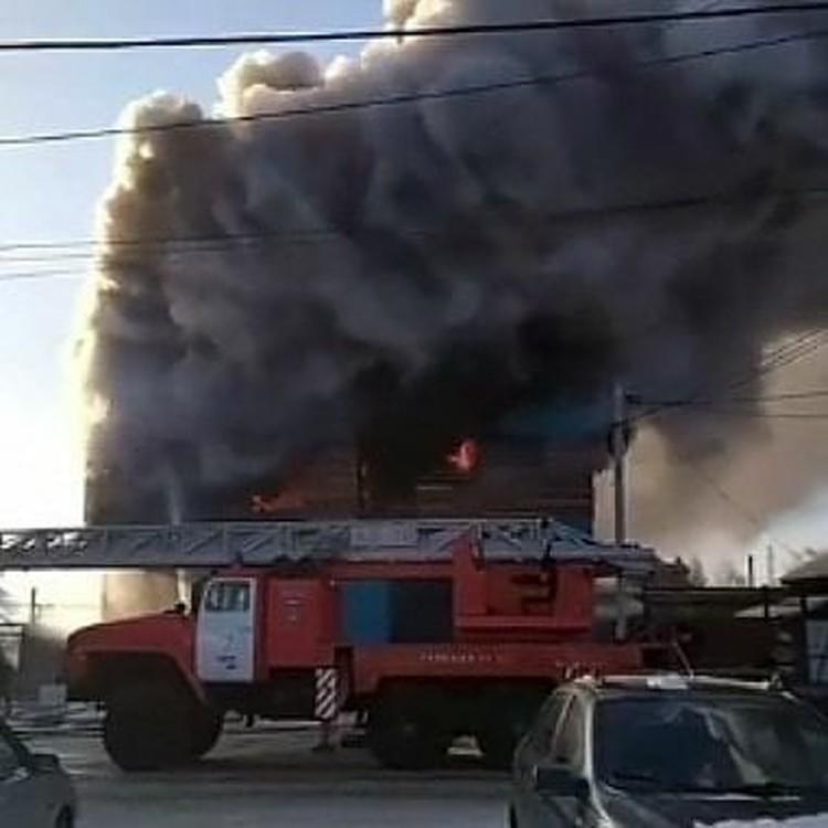 Происшествие случилось в частном секторе на улице Вавилова.