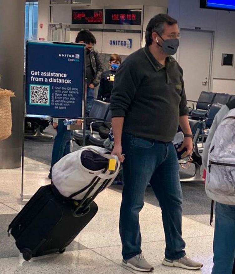 Сенатора Теда Круза сфотографировали в аэропорту. Фото: Twitter@cristinafortx