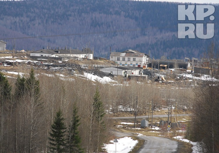 Вместо заграничных курортов Шурман проводит срок в колонии на севере Пермского края.