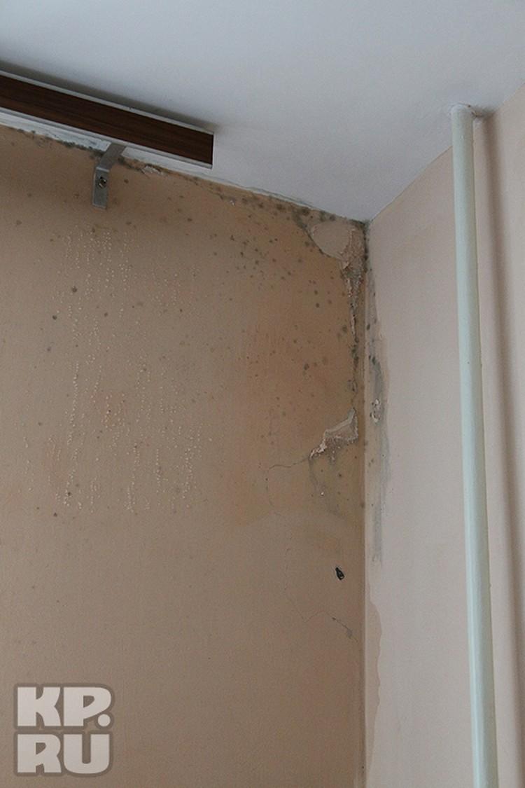 В квартирах сыро и холодно - на стенах плесень