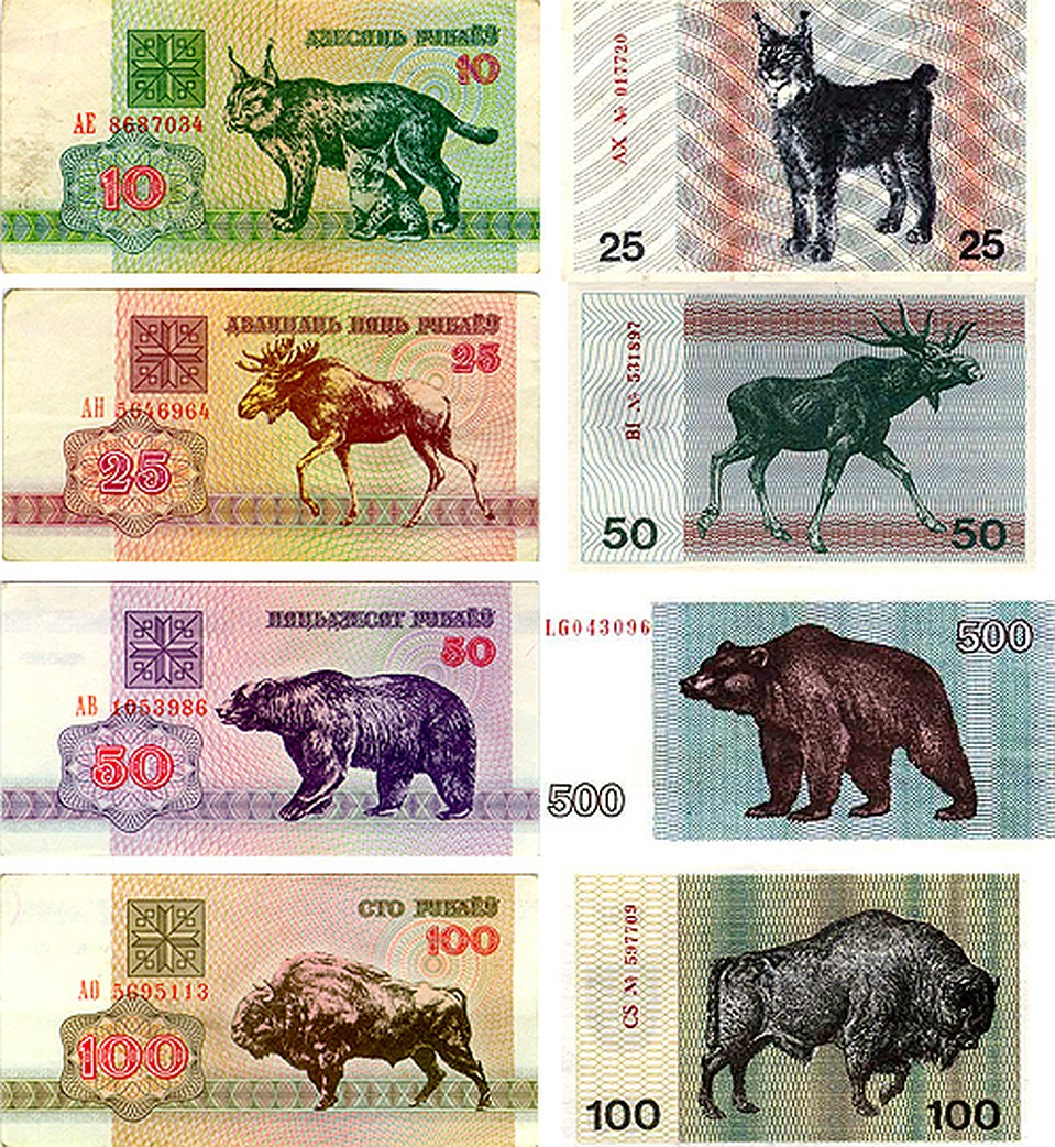 показать зайчики белорусские деньги фото евгением легко приятно