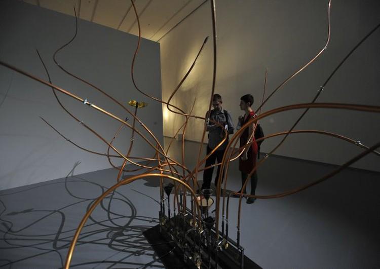 Посетители выставки, проходя мимо веток, сами становятся частью экспозиции.