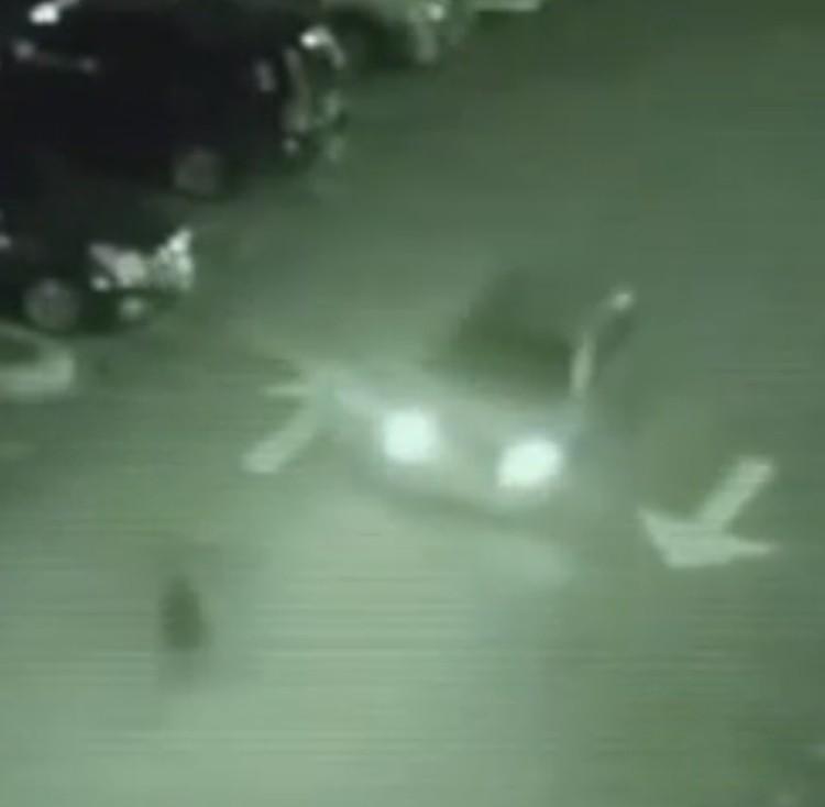Привидение, появляется перед капотом автомобиля (съемка с камеры наблюдения, оснащенной прибором ночного видения).
