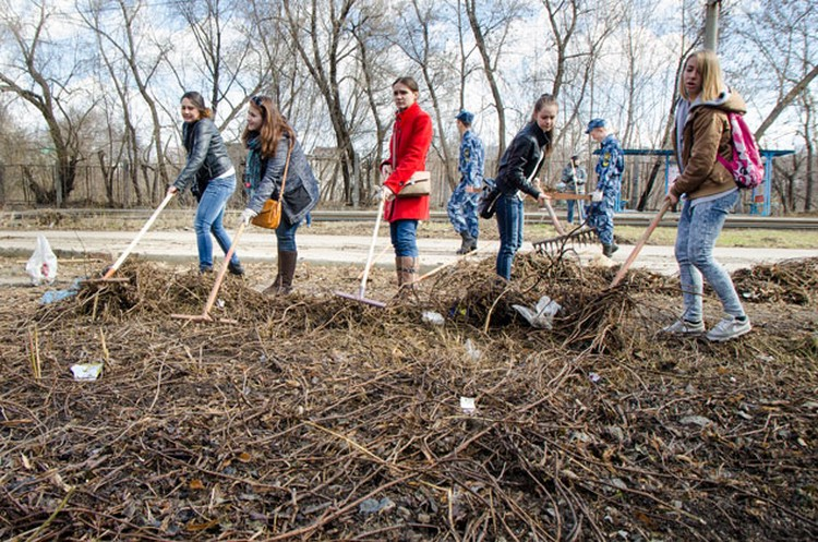 23 апреля в Самаре высадят деревья в память о погибших в Великой Отечественной Войне 1941-1945 г.г.  Фото: Ольга АФАНАСЬЕВА